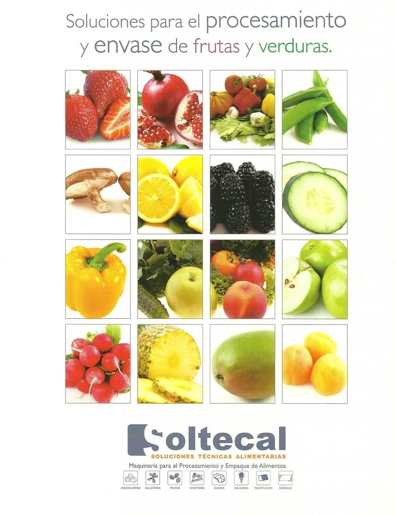 Soluciones Para El Procesamiento Y Envase De Frutas Y Verduras